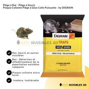 Anti Rats Piége à glu Digrain